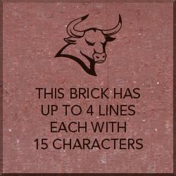 8x8 inch brick with Maverick Logo and text