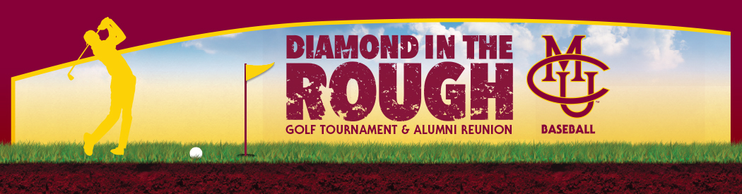 2018_Diamond_In_The_Rough_subpage_banner